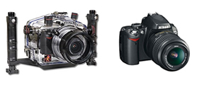Nikon DSLRs - POA