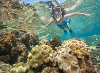Cairns Underwater Photography Service